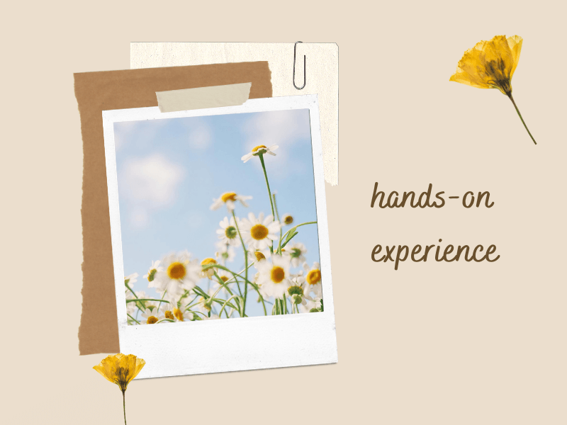 hands-on-experience-meaning